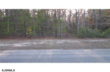 114 Lakeview Dr, Barnegat, New Jersey 08005, ,10,001 To 20,000 Sqft,For Sale,Lakeview Dr,12013