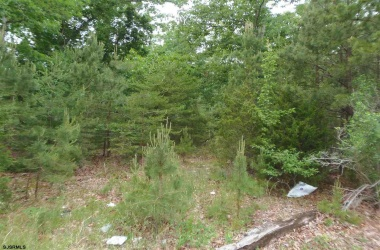131 new york, Galloway Township, New Jersey 08205, ,1+ To 5 Acres,For Sale,new york,13669
