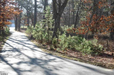 130 Genoa, Galloway Township, New Jersey 08215, ,1+ To 5 Acres,For Sale,Genoa,14067