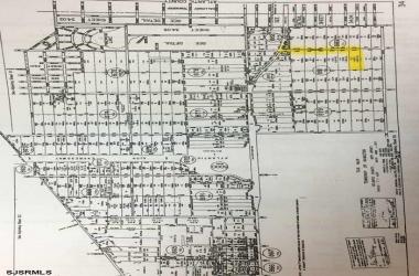 Chestnut Street, Laureldale, New Jersey 08330, ,1+ To 5 Acres,For Sale,Chestnut Street,14074