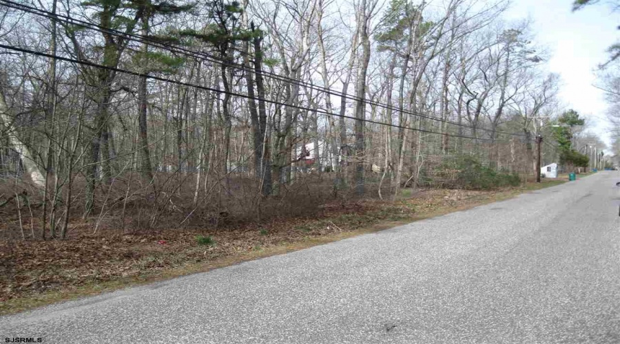 Holly, Mays Landing, New Jersey 08330, ,5+ To 10 Acres,For Sale,Holly,14152