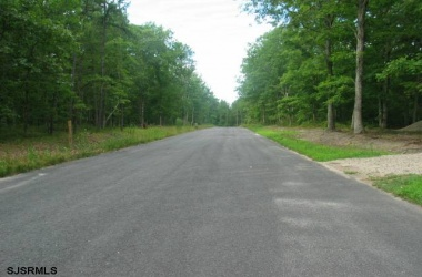 01 HALBERT, Mays Landing, New Jersey 08330, ,1+ To 5 Acres,For Sale,HALBERT,16510