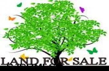 00 Chris Gaupp, Galloway Township, New Jersey 08205, ,1 To 6,000 Sqft,For Sale,Chris Gaupp,1468