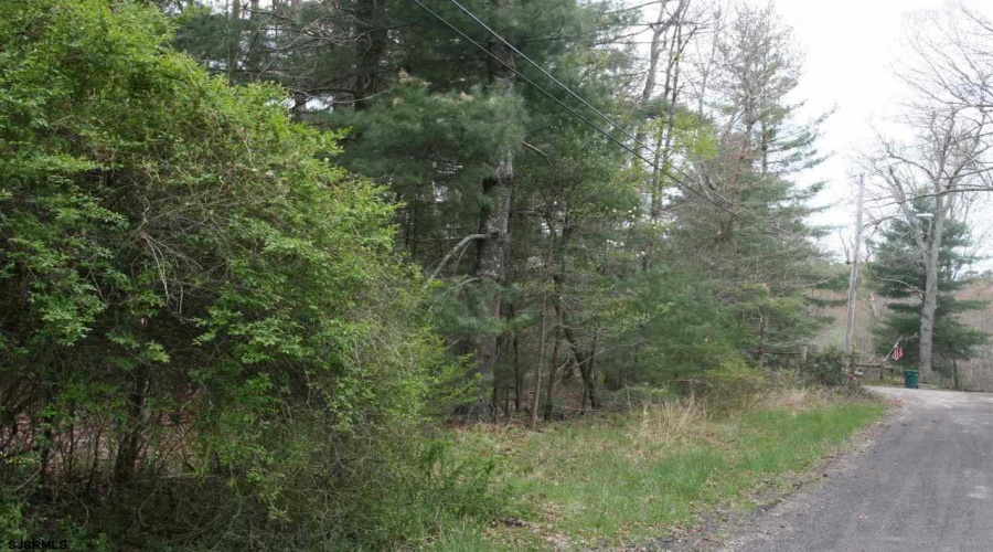 Klondyke Ave B609 L30, Mays Landing, New Jersey 08330, ,5+ To 10 Acres,For Sale,Ave B609 L30,1578