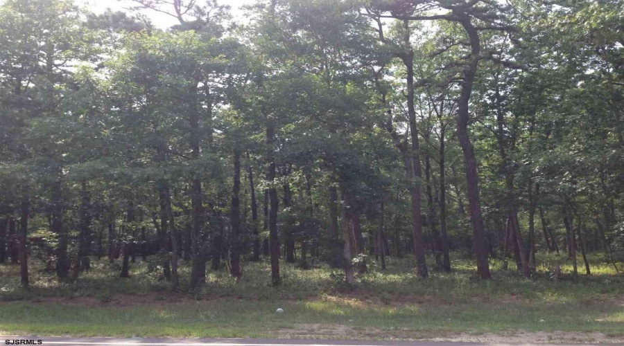 Chris Gaupp Dr, Absecon, New Jersey 08205, ,1+ To 5 Acres,For Sale,Chris Gaupp Dr,8892