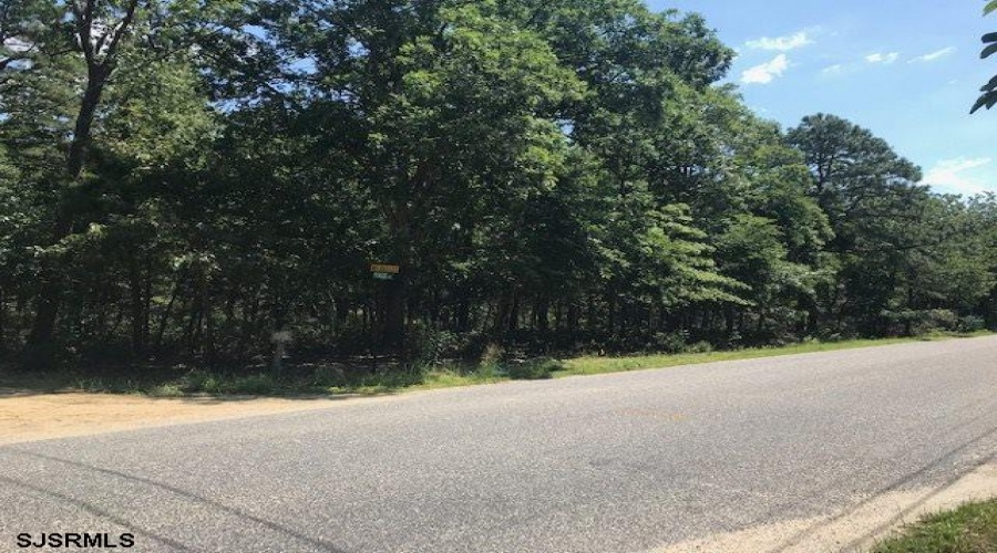 prague, Galloway Township, New Jersey 08215, ,10+ To 20 Acres,For Sale,prague,9365
