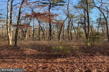 195 2nd, Estell Manor, New Jersey 08319, ,5+ To 10 Acres,For Sale,2nd,10282